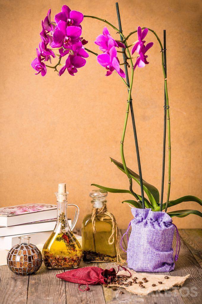 Orchidea avvolta in un sacchetto decorativo di iuta.