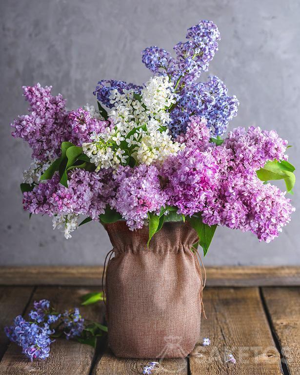 Kwiaty bzu w wazonie ozdobionym woreczkiem jutowym